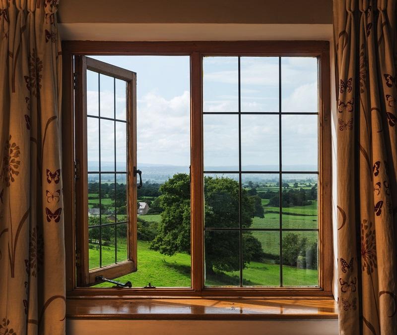 Pheasant - Eaton - View